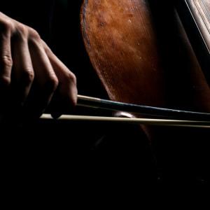 Esercitazione della classe di violoncello